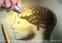 Восстанавливаются ли нервные клетки?